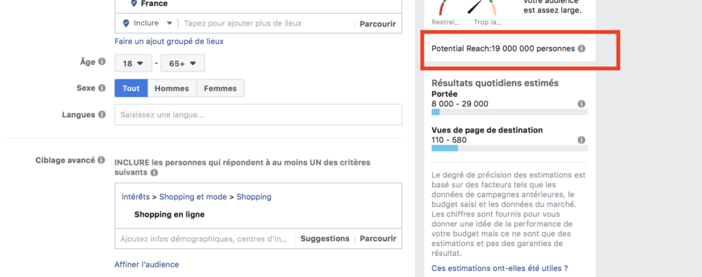 shopping en ligne audience large facebook